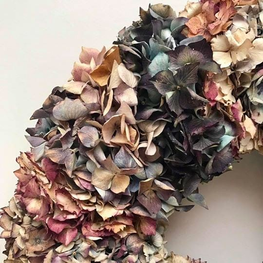 Dried Hydrangea Wreath Close Up