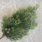 Cedar Branch