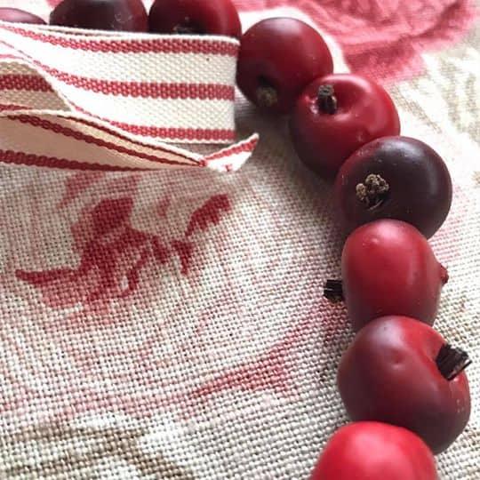 Large Red Rose hip Heart Hanger Close Up 2