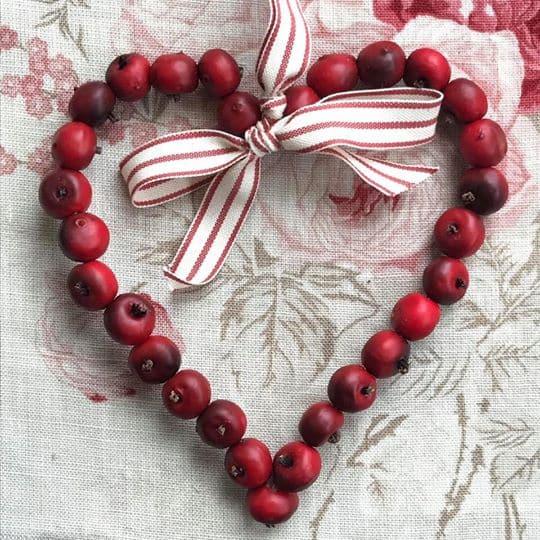 Large Red Rose hip Heart Hanger