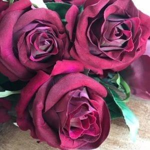 Rose - Red Velvet