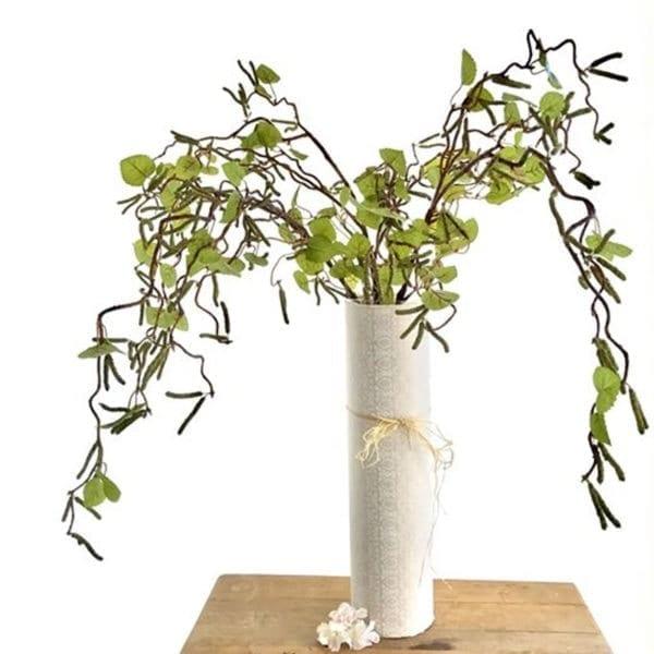 Catkin Branch