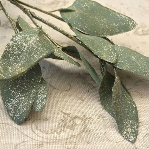 Eucalyptus with Gold Dust Close Up