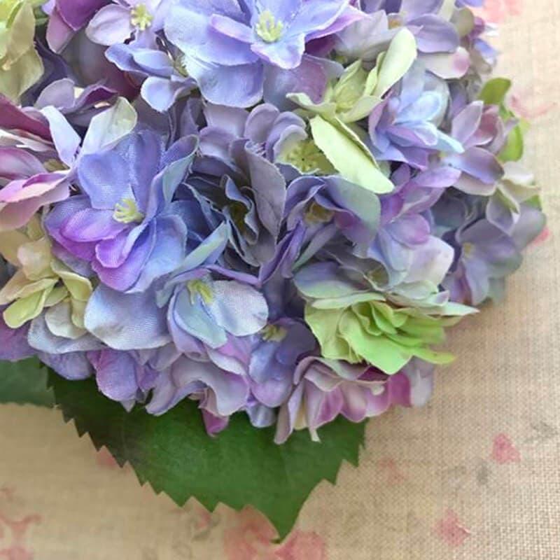 Hydrangea Lilac-Blue Close Up