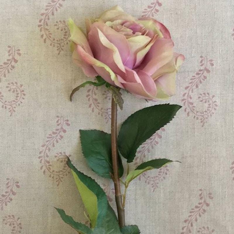 Rose - Lavender-Green